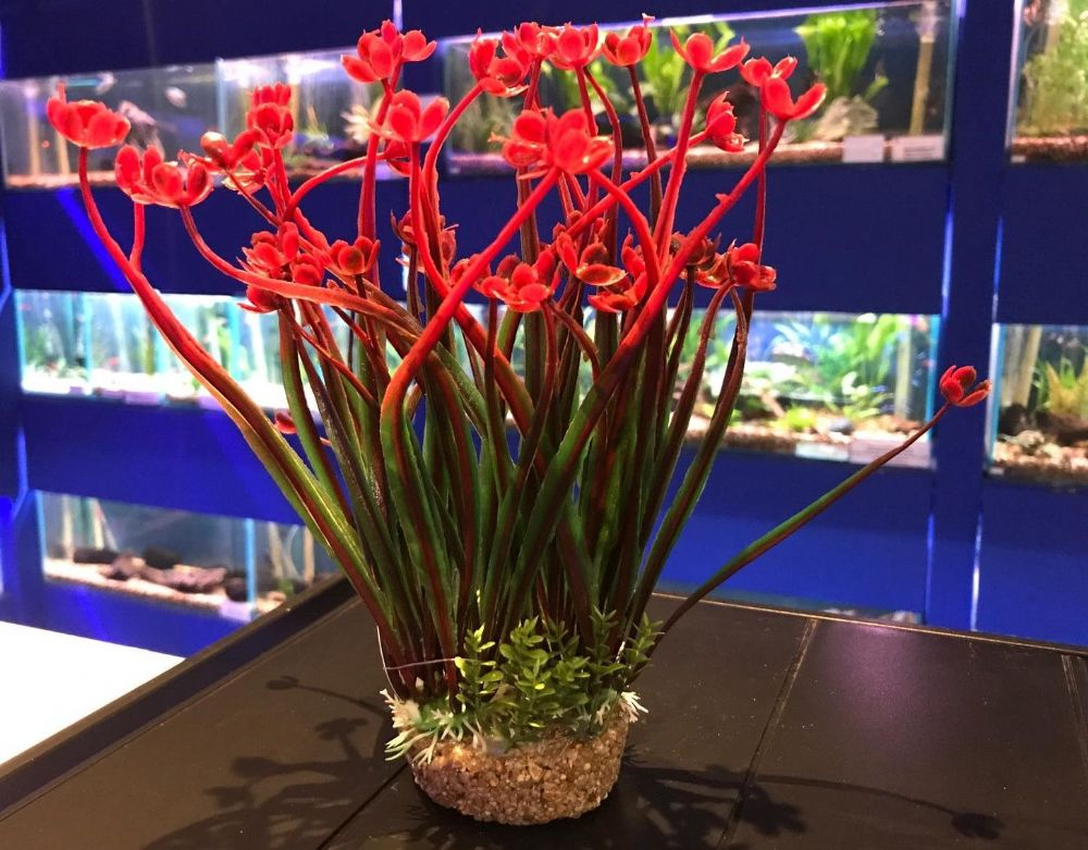 Aquarium or Vivarium Plant on Gravel Base - Red Flowers